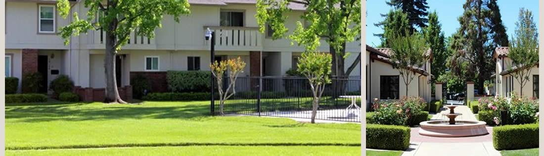 Landscape Maintenance ... - The Landscape Company Martinez CA|Landscaping|Landscape Services