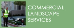 Commercial Landscape Services California