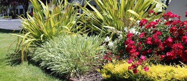 Commercial Landscaper The Landscape Company Property Landscaping Management