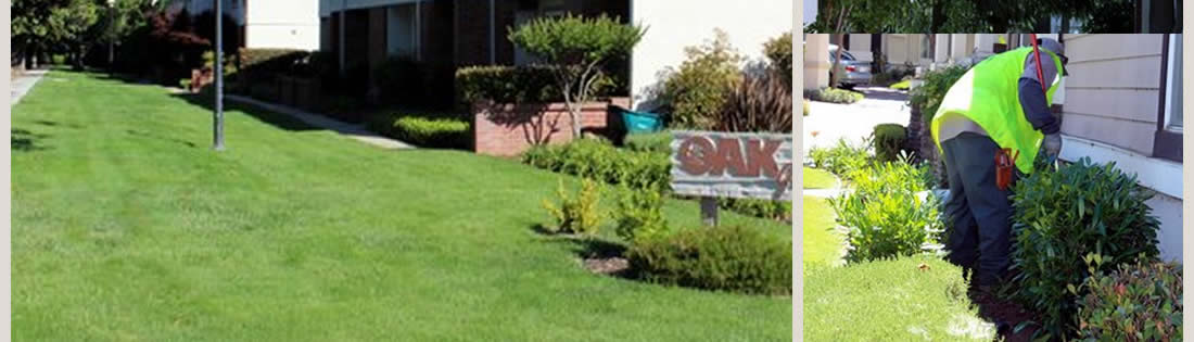 Commercial Lawn Care Services The Landscape Company Property Landscaping  Management ... - Commercial Landscape Services The Landscape Company Landscaping