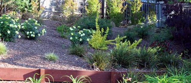Residential Landscape Services The Landscape Company Property Landscaping Management