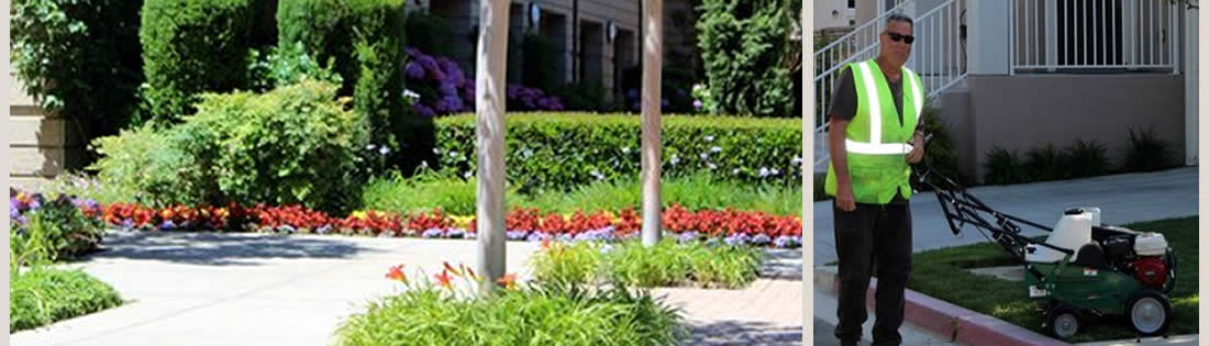 Residential Lawn Care Services The Landscape Company Property Landscaping Management